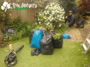 Professional clearance of your garden around London