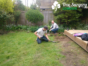 Affordable Gardeners from London