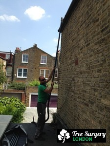 Trustful Gutter Cleaners near London