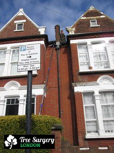 Competent Gutter Cleaners for London Residents